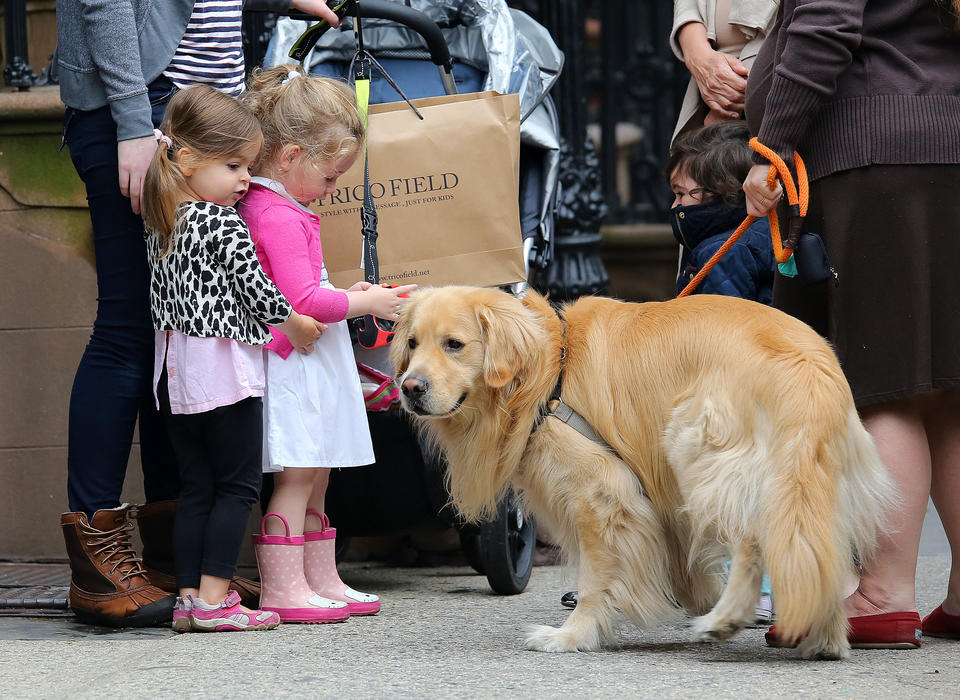 Marion and Tabitha Broderick play with a neighbor's dog in NYC